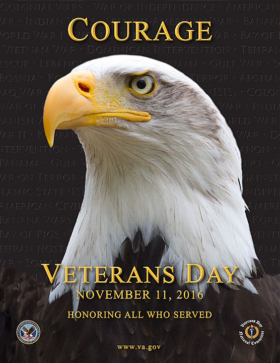 Veterans Day 2016 Poster